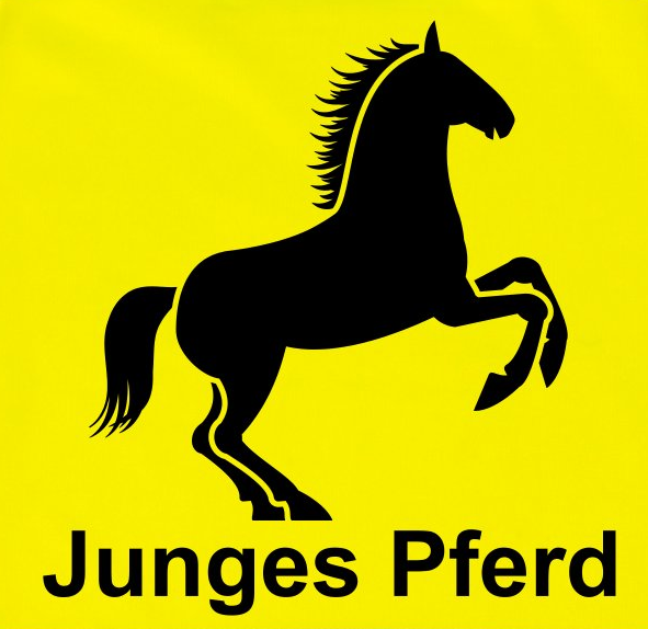 "Warnweste ""Junges Pferd"""